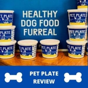 pet-plate-review-main-small